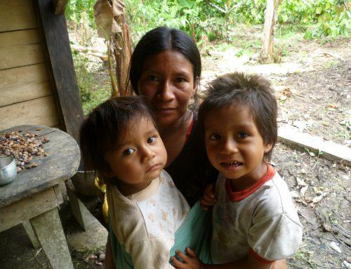 Moyens de subsistance des familles Kichwa