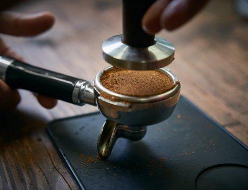 Découvrir et apprécier le café