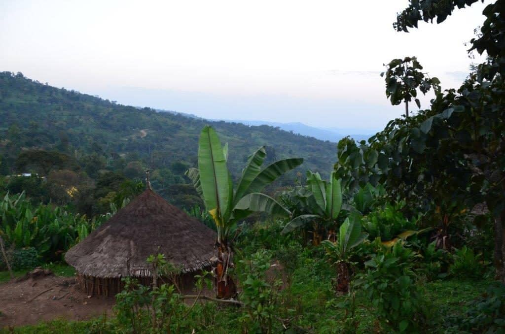 Tukul typisches Haus in Kaffa Äthiopien